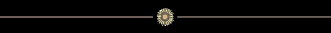 Calysta Hannah - Line Separator