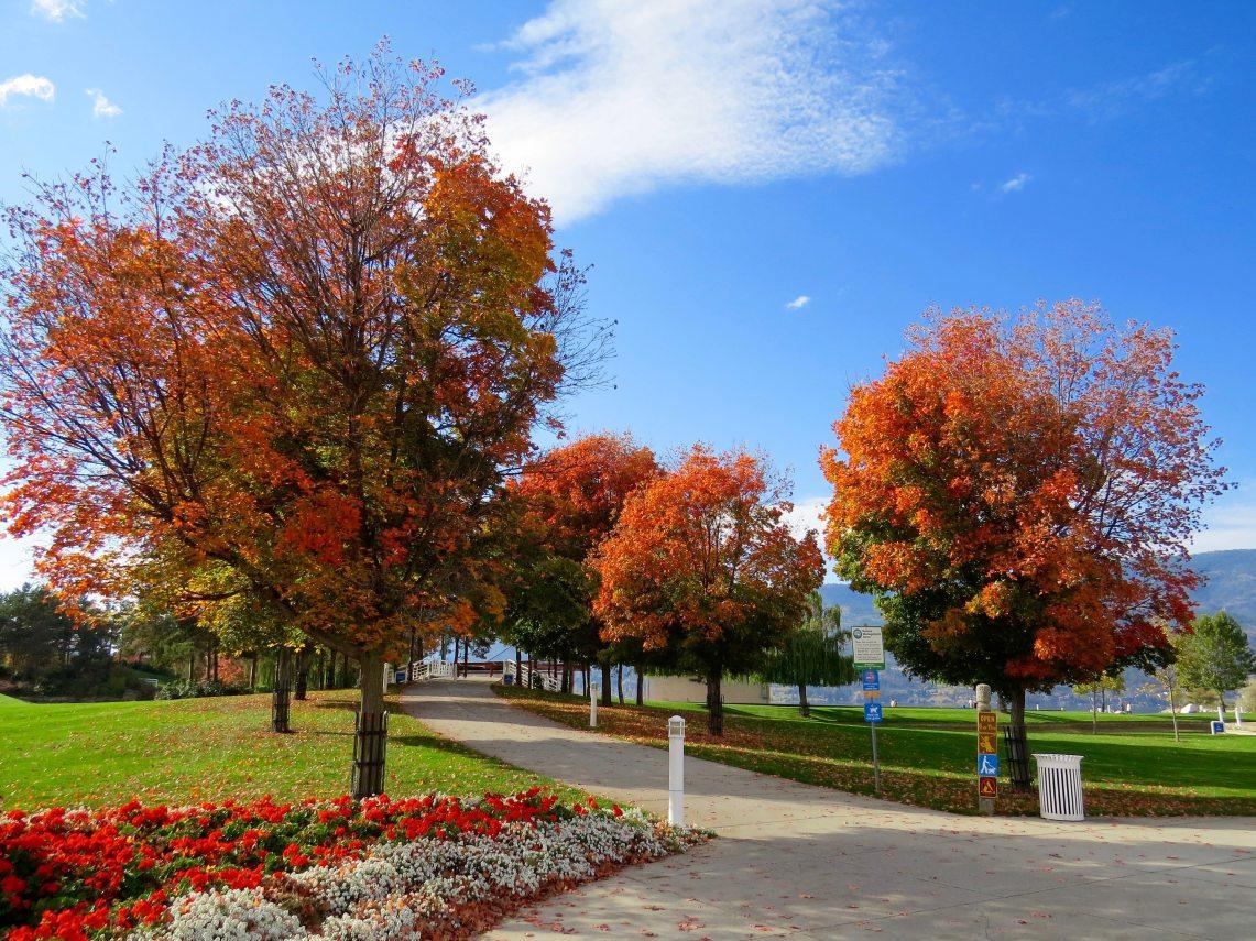 Shades Of Autumn – Colour Palettes